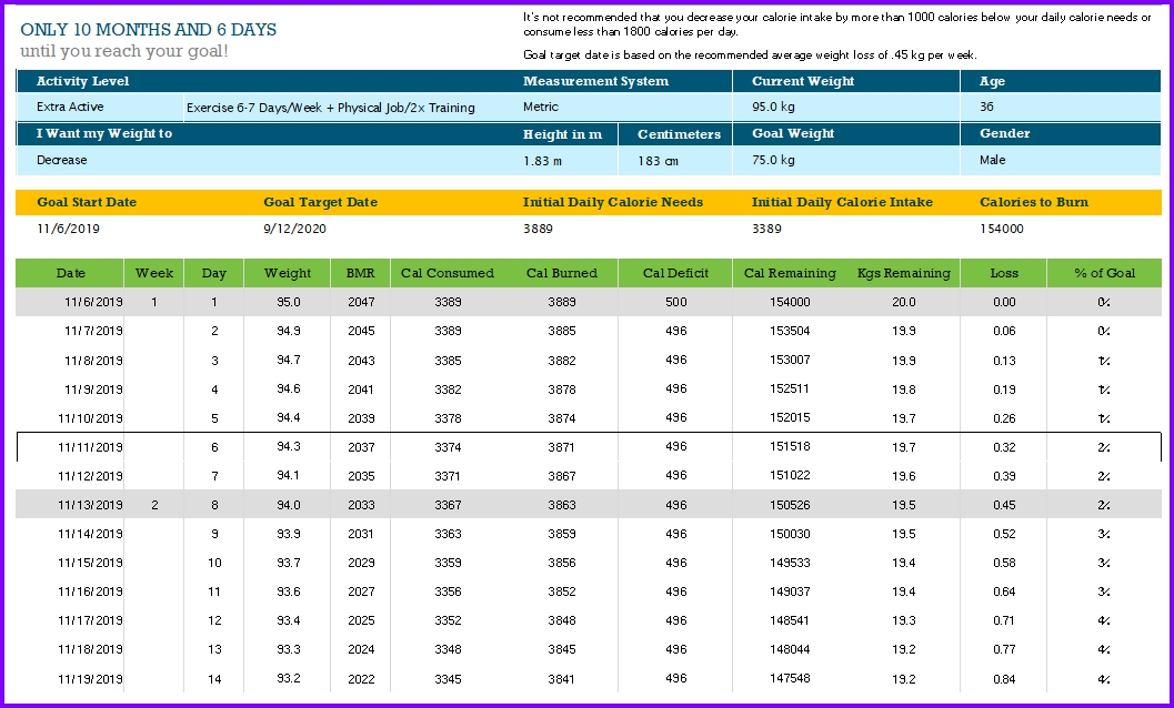 Calorie Counter Excel Template